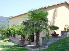 Renting a house in Tuscany, Italy - Villa il Giardino, Cortona - Italian holiday rental property. Sleeps 4 plus 1.