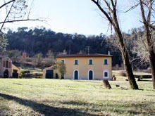 A Tuscan holiday house for rent - Villa Olimpia